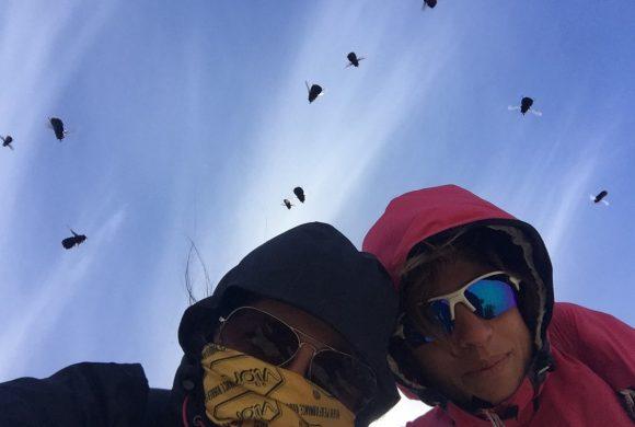 Da non perdere a Chiloè: Kayak a Chepu e Tecnica mapuche contro le mosche assassine
