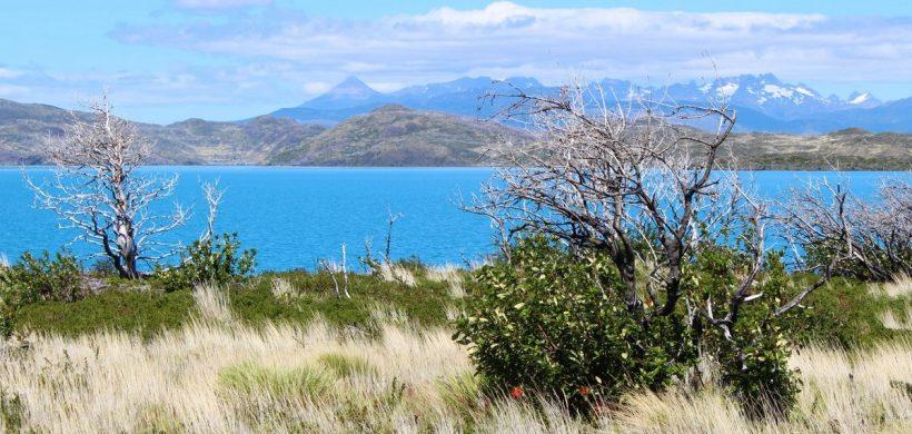 Quanto costa un viaggio Fai da Te in Patagonia?