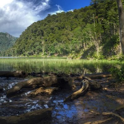 Parco nazionale Hurquehue, Araucania