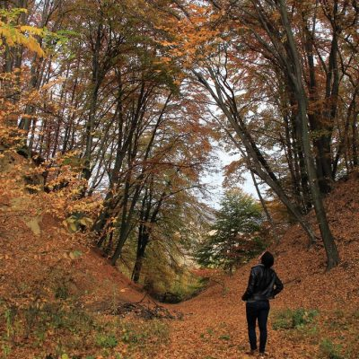 Autunno in Transilvania