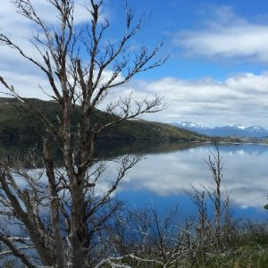 Lago Nordenskjold